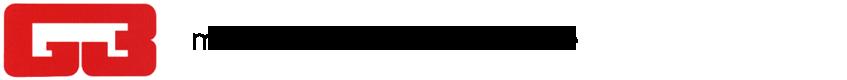 G3 Verona Logo